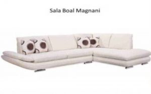 phf2016-boal-model-magnani-sectional