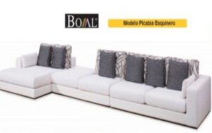 phf2016-boal-model-picabia-sectional