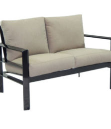 Vertice City Cushioned Loveseat